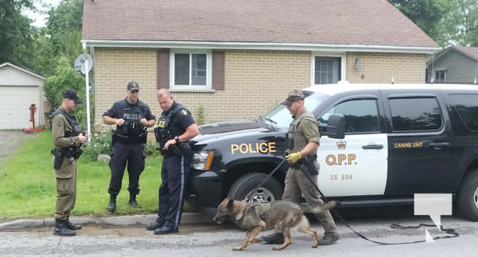 Northumberland OPP Respond To Report of a Break and Enter